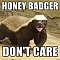 Honey Badgers Team Logo