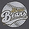 Bad News Bears Team Logo