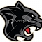 The PitchBook Panthers Team Logo