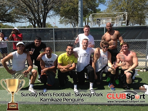 Kamikaze Penguins  (a) - CHAMPS