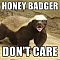 Honey Badgers