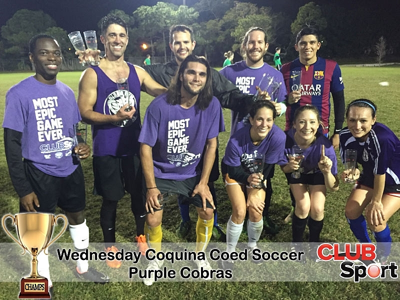 Purple Cobras (i) - CHAMPS