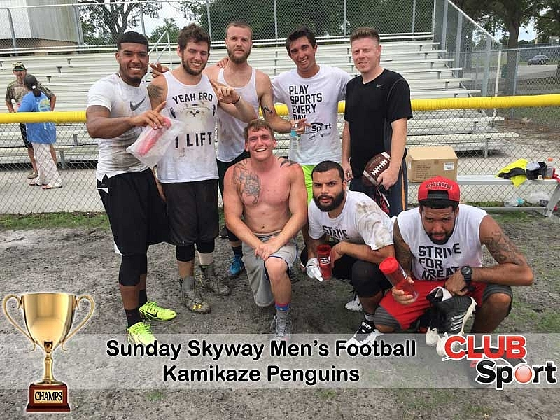 kamikaze penguins (i) - CHAMPS
