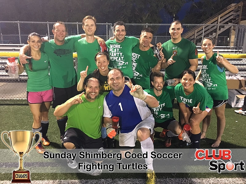 Fighting Turtles (b) - CHAMPS