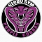 Globo Gym Cobras Team Logo