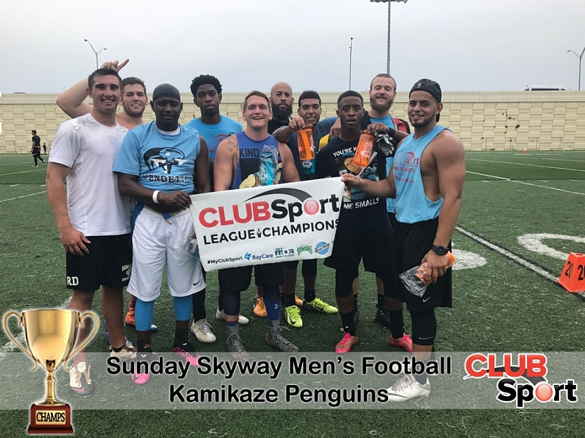 kamikaze penguins (c) - CHAMPS