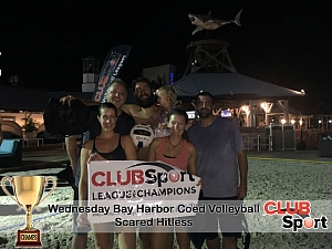 Scared Hitless (cb) - CHAMPS photo