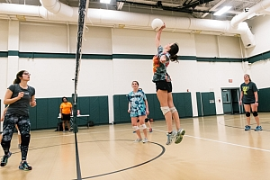 PLAYNOLA Sports Volleyball