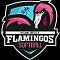 Flamingos Team Logo