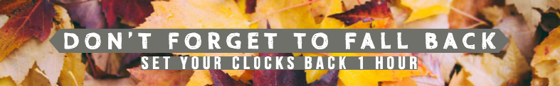 Daylight Savings - Fall Back